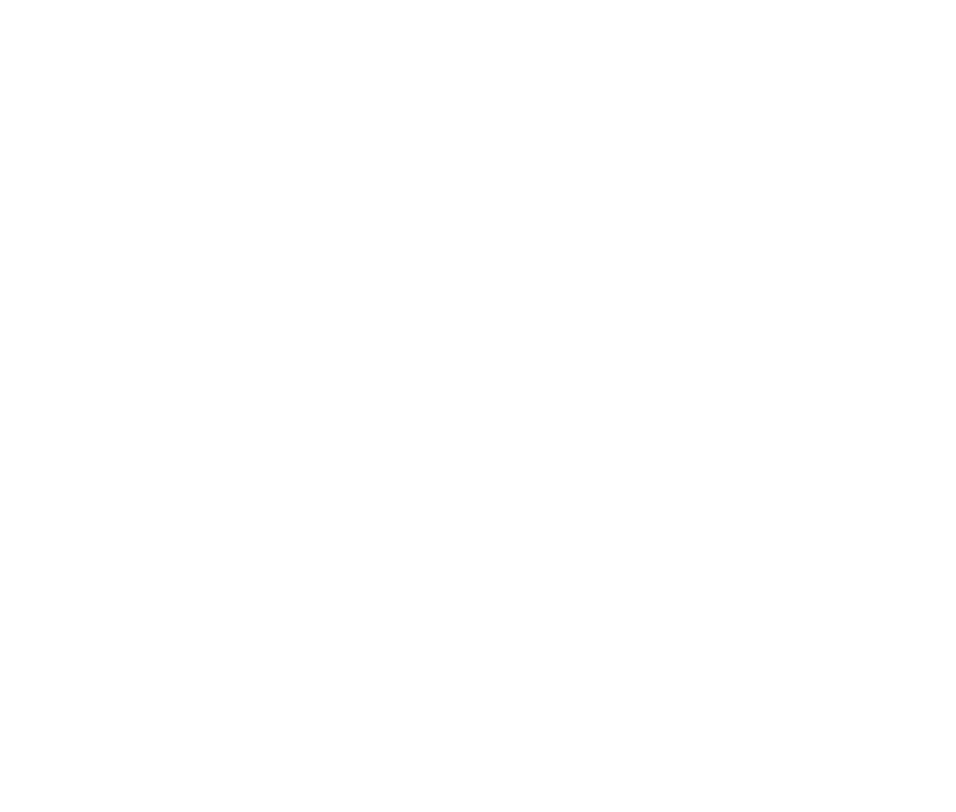 TIFF18-Official_Selection-rev.png